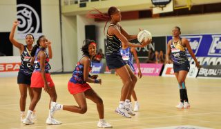 VICTORIES FOR LIMPOPO BAOBABS AND EASTERN CAPE ALOES